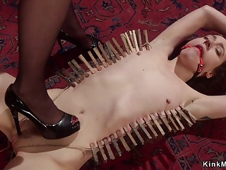 Tied up pansy student butt fucking screwed